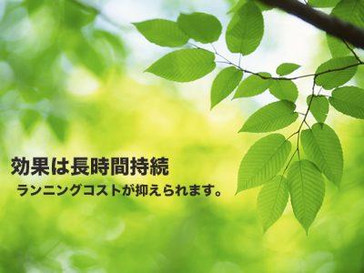 img003のコピー